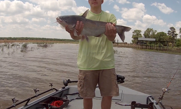 Catfishing Tips: Catch More Cats with Bright Colored Fishing Line