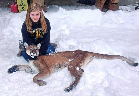 Girl Shoots Mountain Lion that Stalked Her Brother