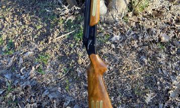 My Favorite Gun: Stevens .22/410