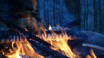 campfire-woods