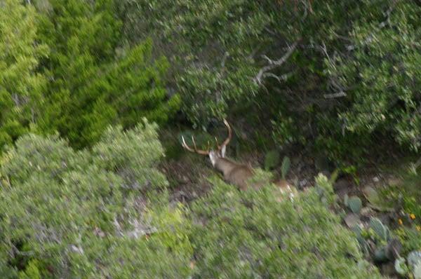 httpswww.outdoorlife.comsitesoutdoorlife.comfilesimport2014importImage2010photo30010FordRanch_123.jpg
