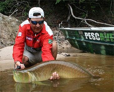 httpswww.outdoorlife.comsitesoutdoorlife.comfilesimport2014importImage2010photo6arawana_record.jpg