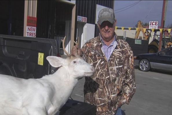 Georgia Hunter Takes Albino Whitetail Deer
