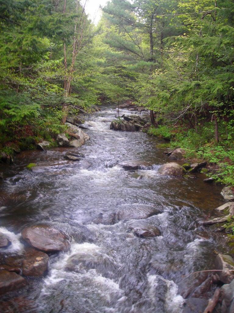 httpswww.outdoorlife.comsitesoutdoorlife.comfilesimport2014importImage2009photo3DSCN2728.JPG