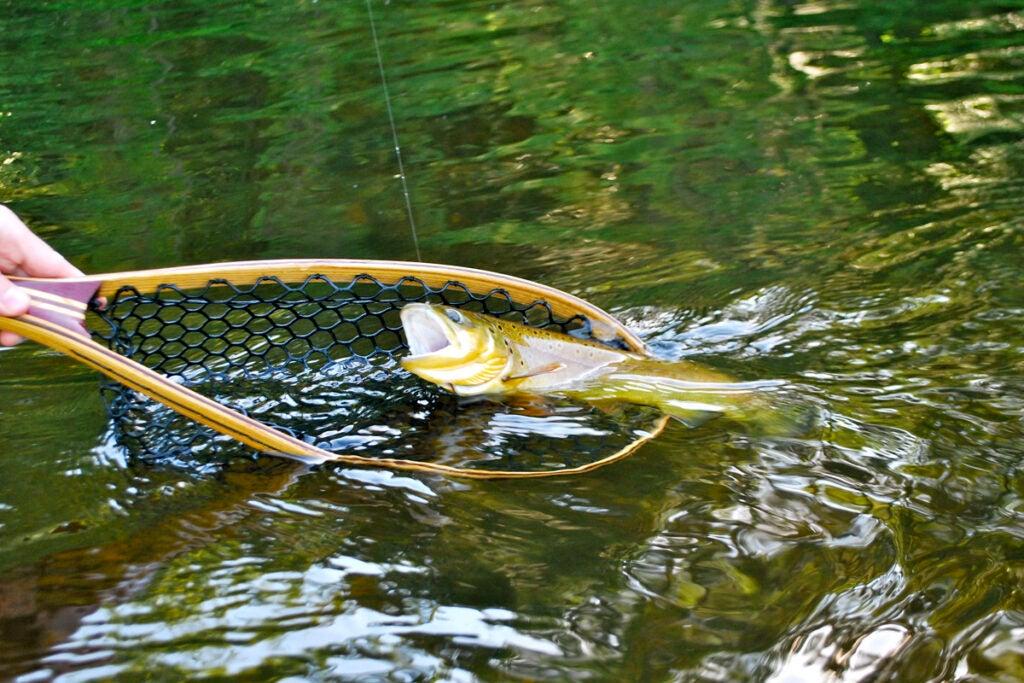 httpswww.outdoorlife.comsitesoutdoorlife.comfilesimport2013images201006slide4_4.jpg