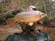 Carp, The Next Big Thing for U.S. Anglers?