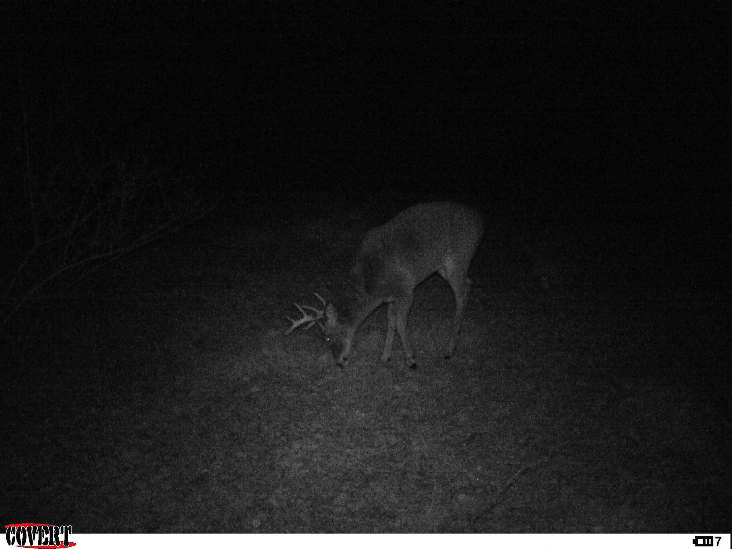 Micro Manager: Finally, a Buck on Camera