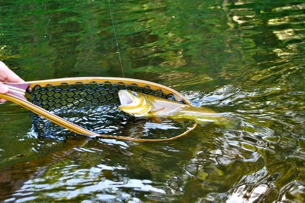httpswww.outdoorlife.comsitesoutdoorlife.comfilesimport2014importImage2011photo1001321579slide44_2.jpg