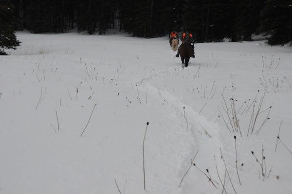 httpswww.outdoorlife.comsitesoutdoorlife.comfilesimport2013images201011Day4P_0.jpg