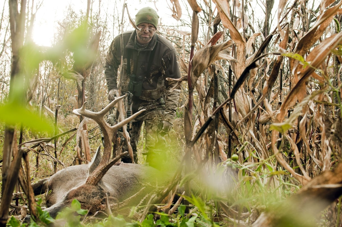 What to Do When a Hit Deer Crosses the Property Line