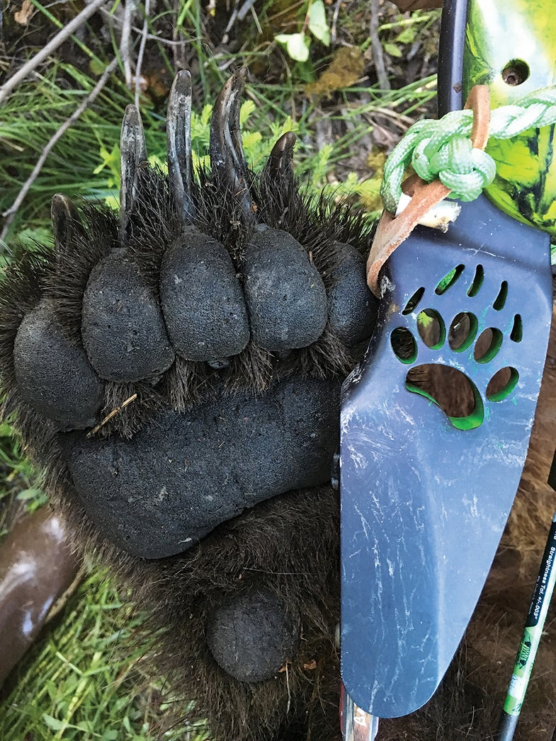 grizzly hunting with bow
