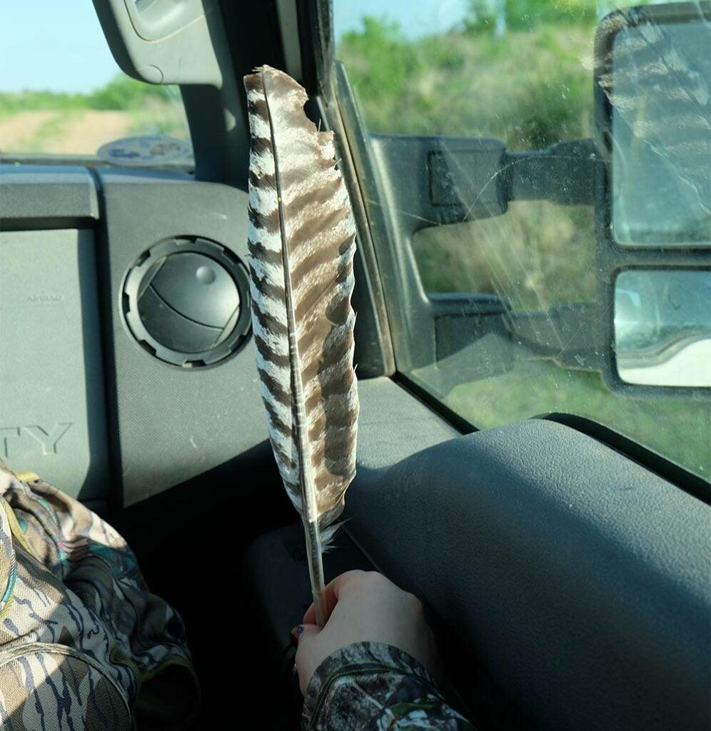 hilary ribons turkey feather