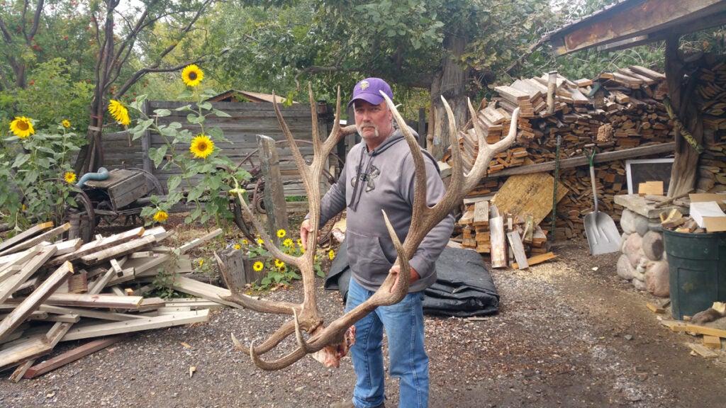steve felix holding the world record elk