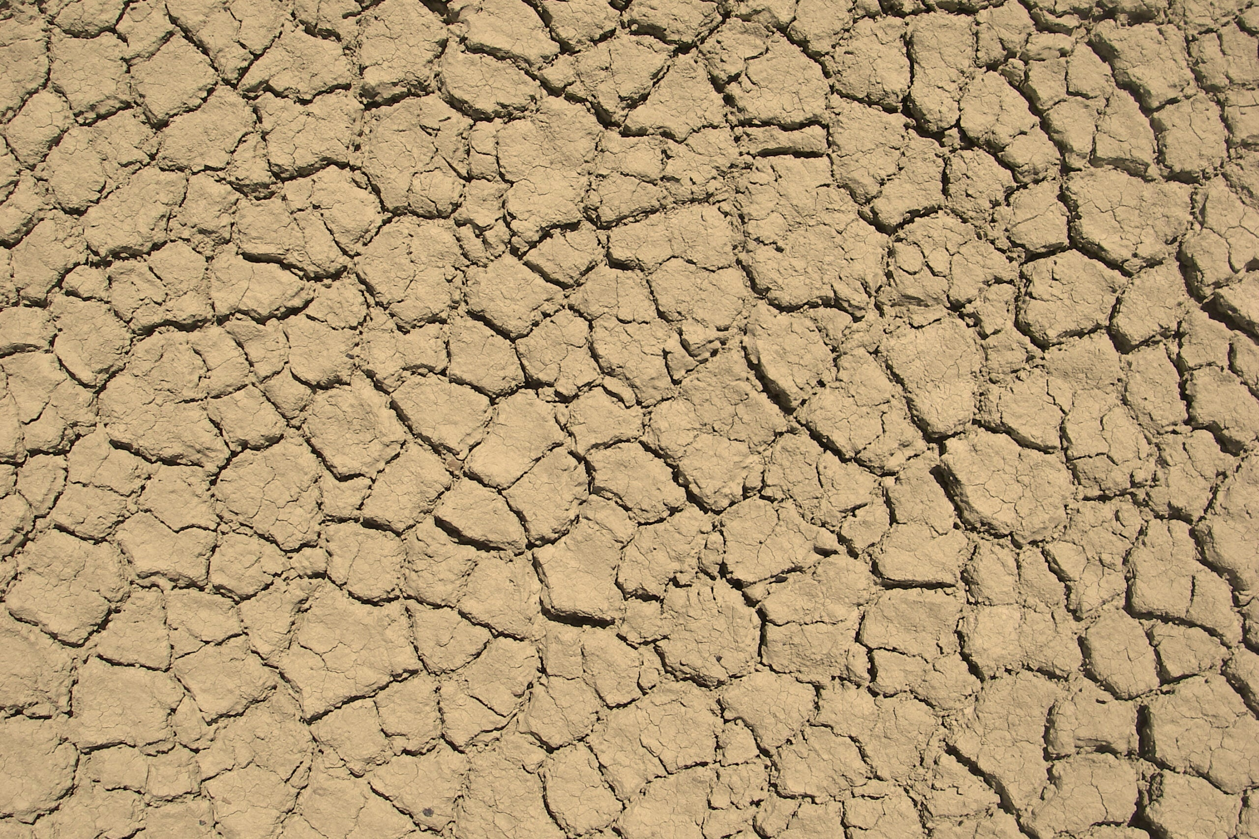 Survival Skills: 5 Myths of Dehydration