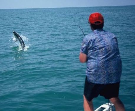 httpswww.outdoorlife.comsitesoutdoorlife.comfilesimport2014importImage2009photo7FINAL_5_Homosassa_Florida_3_0.jpg