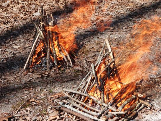 Fire Starting: Teepee vs Log Cabin