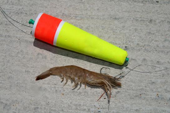 4 Trusty Shrimp Rigs for Sport Fish