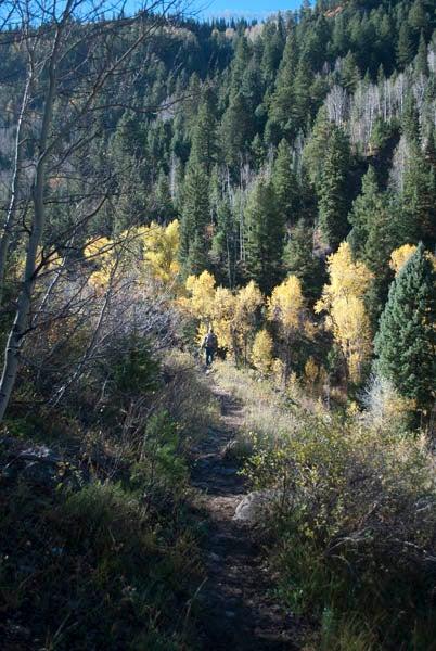 httpswww.outdoorlife.comsitesoutdoorlife.comfilesimport2013images201011DSC_0284_0.jpg