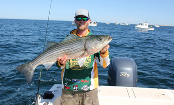 Fishing Tips: Why You Should Use Artificials for the Fall Striper Blitz