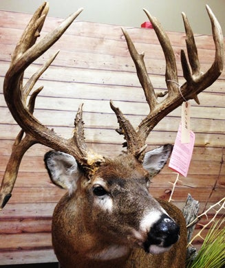 Photos: Monster Nontypical Bucks of Illinois