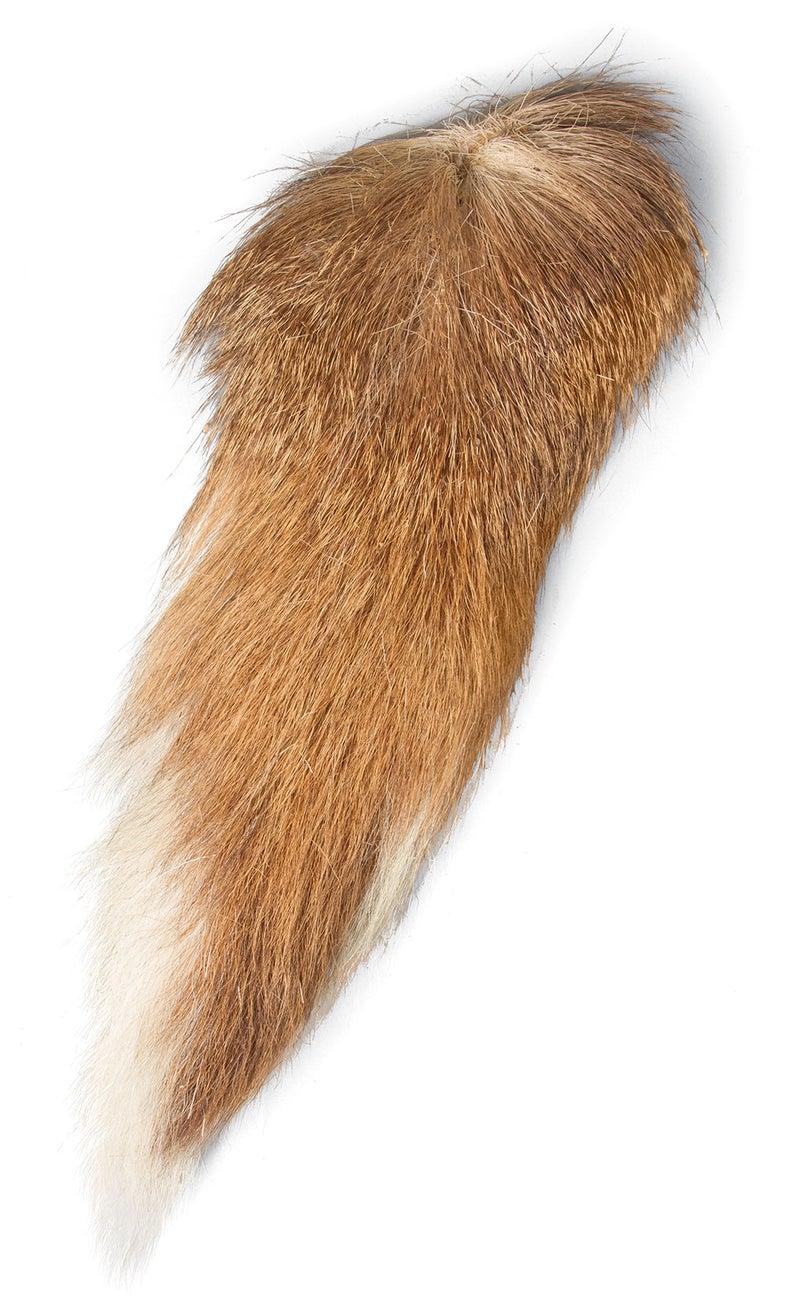 deer tail decoy