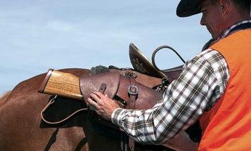 5 Great Rifles for Horseback Hunts