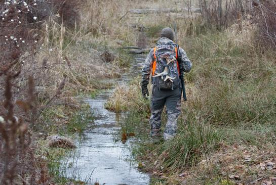 Deer Hunting: Go Deep for Public Land Bucks