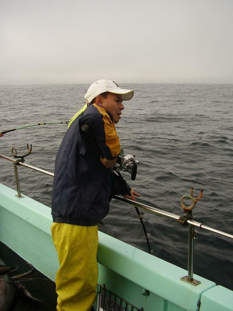 Casting for more jumbo squid