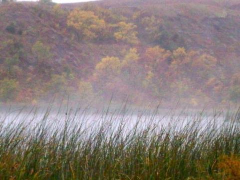 httpswww.outdoorlife.comsitesoutdoorlife.comfilesimport2014importImage2009photo7Decfoliage_37.jpg