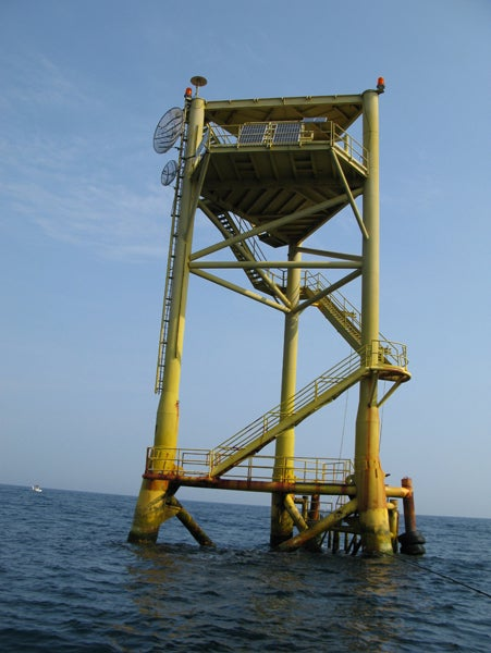 httpswww.outdoorlife.comsitesoutdoorlife.comfilesimport2014importImage2010photo300102_The_South_Tower_is_a_haven_for_big_amberjack.jpg