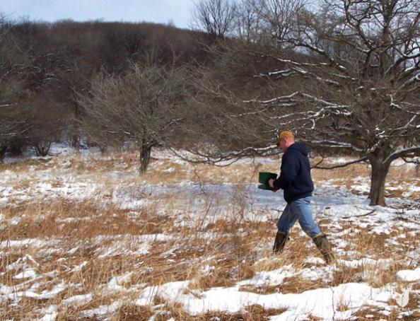 Whitetail Management: Early Food Plot Fixer