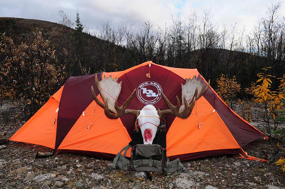 moose antlers in front of a hunting tent