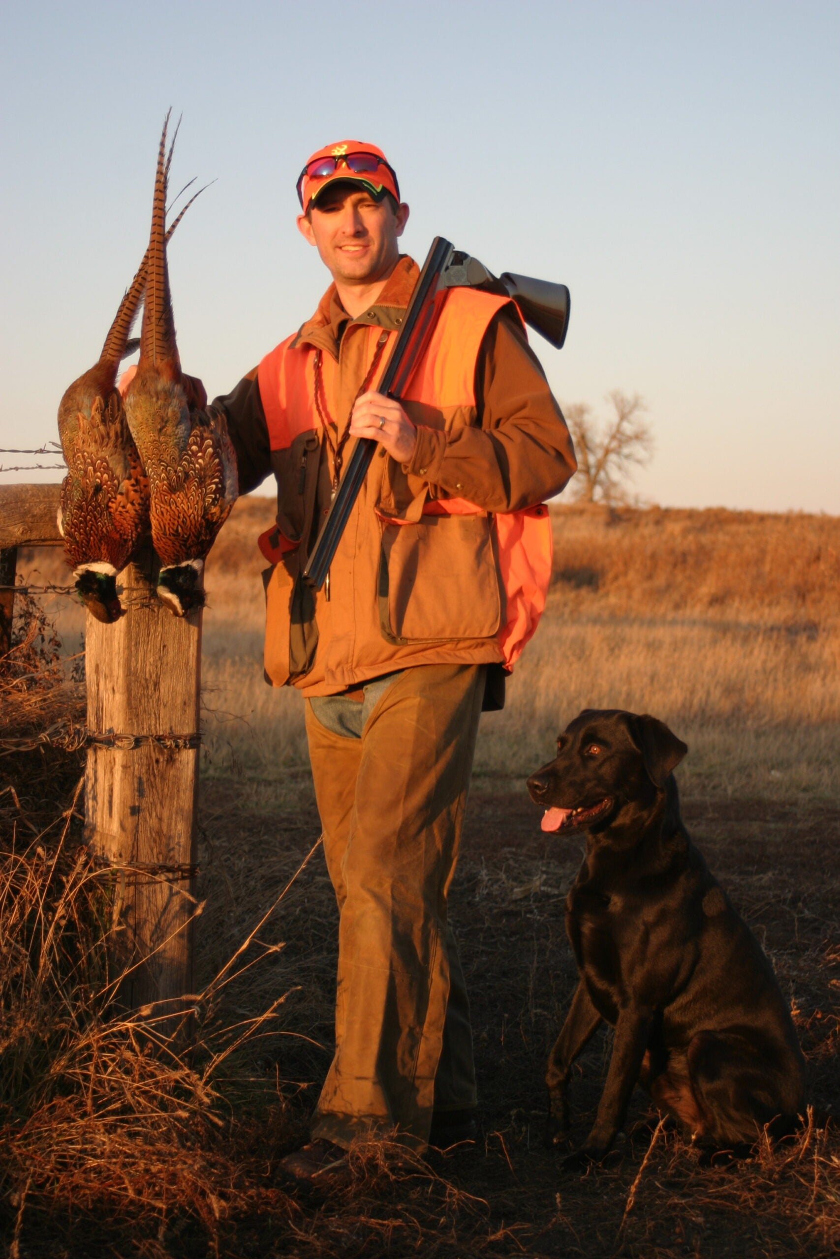Training: SD Pheasant Recovery