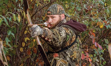 So You Want to Learn to Hunt with a Traditional Bow?