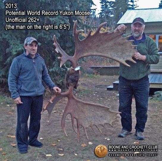 Boone and Crockett Club Confirms World Record Moose