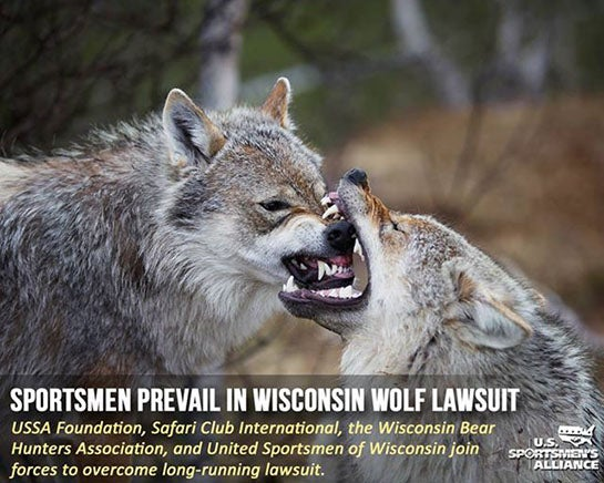 Upheld: Hunting Wolves with Hounds Allowed in Wisconsin