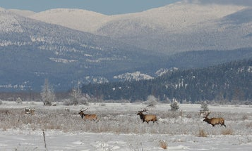 Photos: Hunting National Wildlife Refuges in the Pacific Northwest