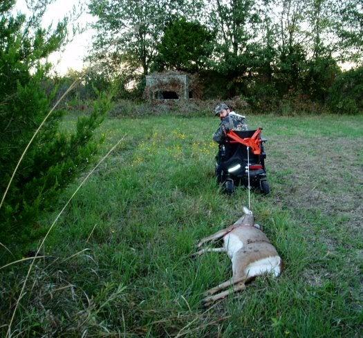 Deer transport by wheel chair.