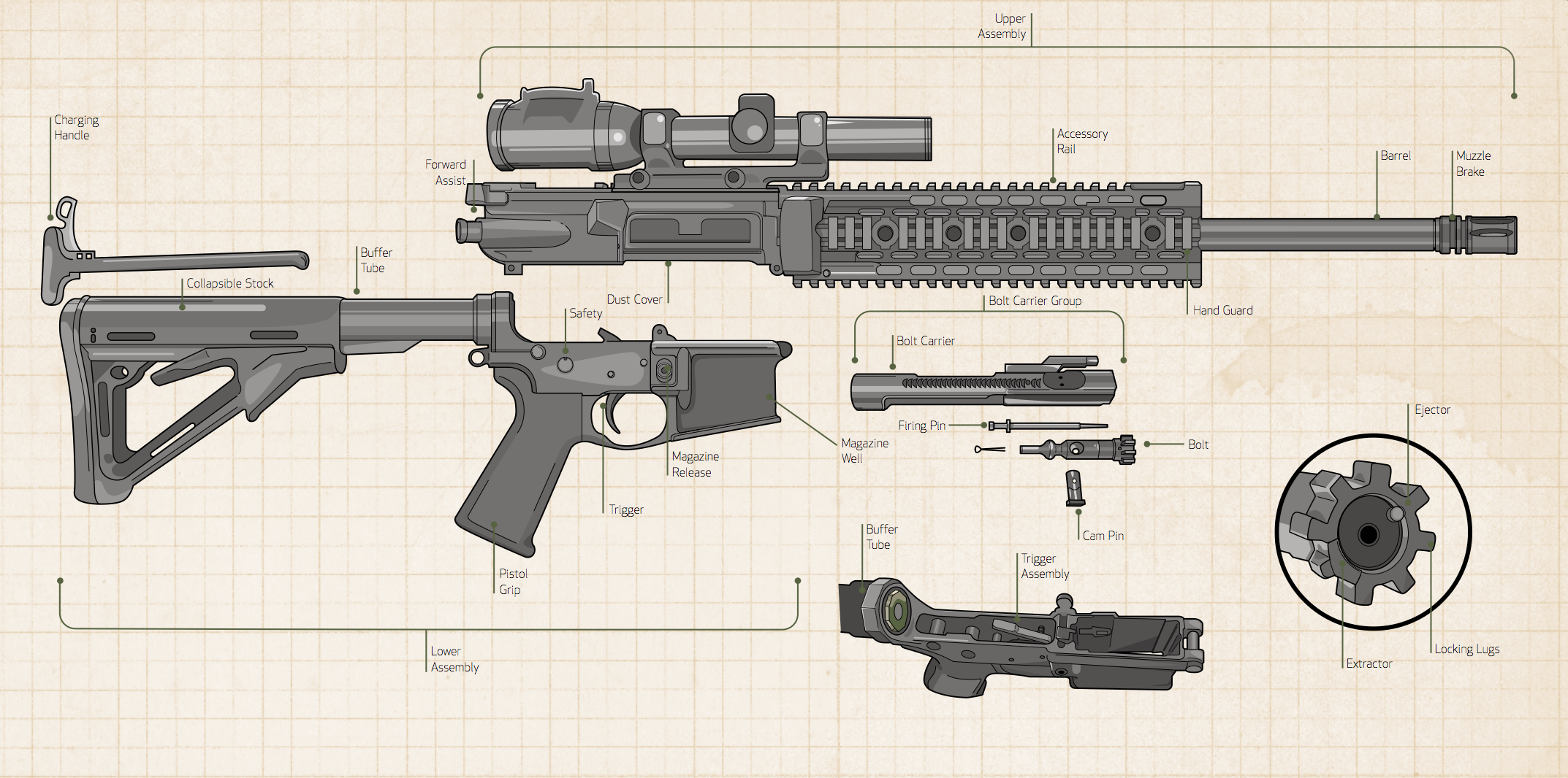 Gun History: Know Where the AR Came From