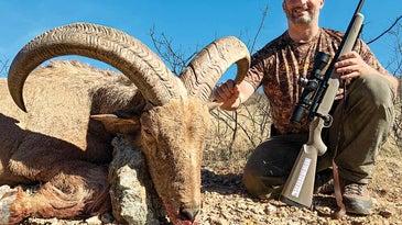 sheep hunting rifle