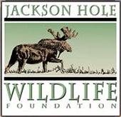 """""""JacksonHole"""""""