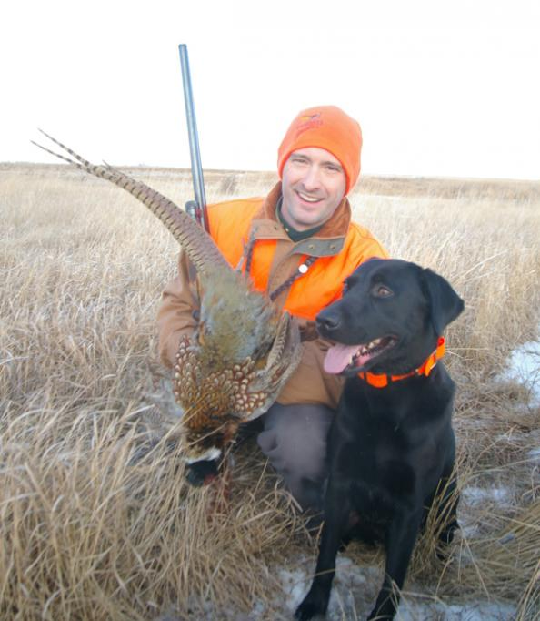 Back to Basics Hunting: Late-Season Birds and Dogs