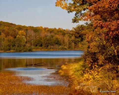 httpswww.outdoorlife.comsitesoutdoorlife.comfilesimport2014importImage2009photo7Decfoliage_24.jpg