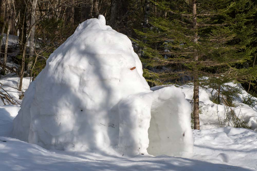 igloo for snow survival