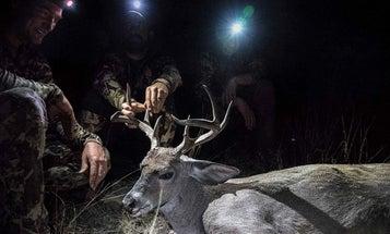 Bucks Beyond the Border: A Coues Deer Hunt in Sonora