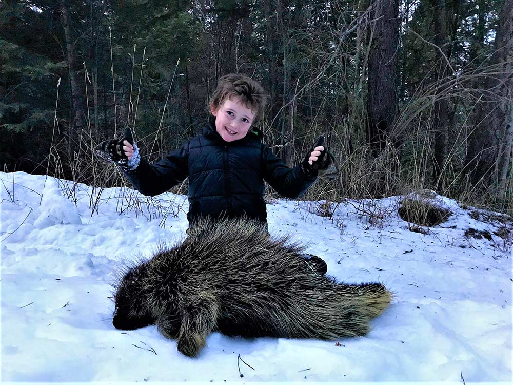 young kid kneeling next to porcupine