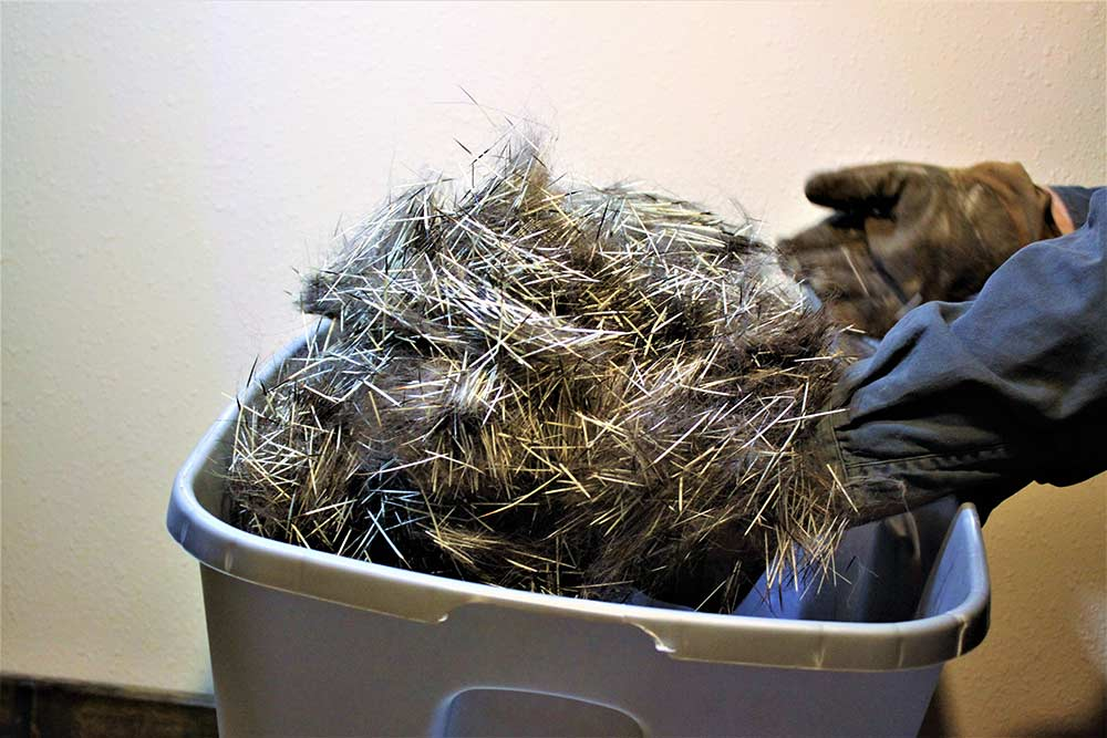 buckets of dequilled porcupine