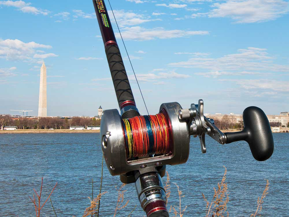 fishing reel with the washington monument in the distance