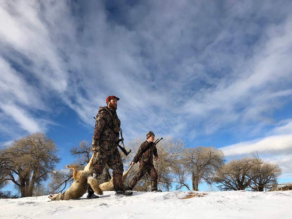 father and son carrying coyotes in snow