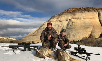 13 Predator Hunting Tips and Tactics from Expert Coyote and Bobcat Hunters